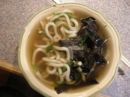 udon's and wild woodear by tactimus