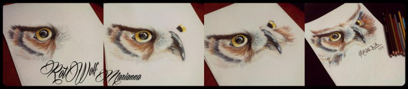 Owl Process by rotwolf93
