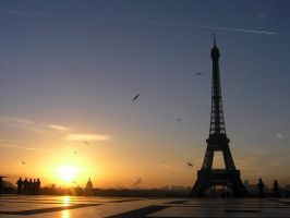 paris morning by Zuziensk