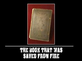 The book that was saved... by Nayzak