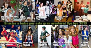 Collage cosplay 2013 by Heavengreen