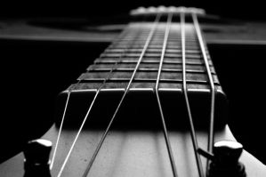 Frets by RuckMonkeyPhotos