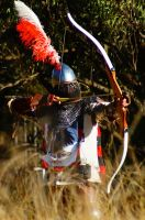 Thrum of the Longbow by SnappyIrides