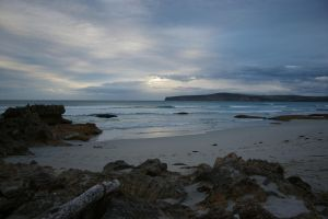 Shelly Beach by FallowpenStock