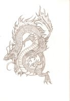 Chinese Dragon by drgknot