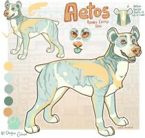 Aetos by Colonels-Corner