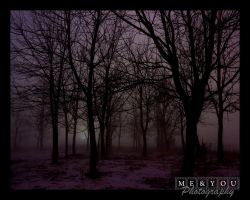 Winter Fog by MEandYouPhoto