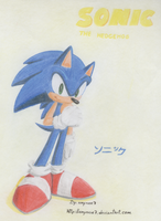 Sonic The Hedgehog 3D by amyrose7