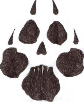 Skull-paw by thewisesloth