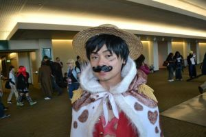 Incognito Luffy by vandersnark