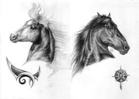 Horses of Rohan - Arin and Telnar by fenifire