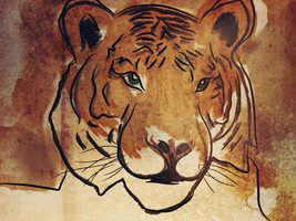 Shere Khan by Survulus