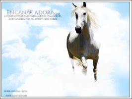 Encanae adora by oceancoralgraphics