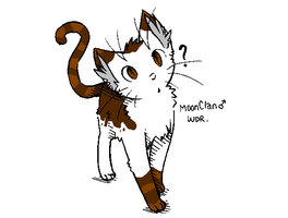 Warrior cat adoption 47 CLOSED by ThePokemon123941