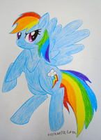 Rainbow Dash in Colored Pencil by TerraTerraCotta