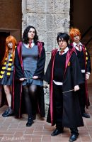 Harry Potter Gryffindor by LauzLanille