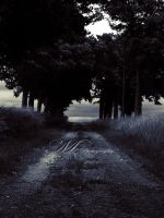 At the end of the road by MagaliM