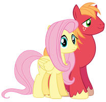 Fluttershy and Big Macintosh Vector by BobtheLurker