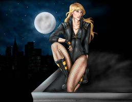 Black Canary on Roof by JGiampietro
