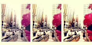 colorful NY . .... . first by inContrast