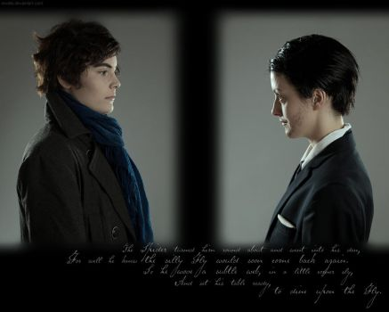 BBC Sherlock: The Spider and the Fly by Revelio