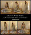 Brocade Dress Pack 3 by delainestock
