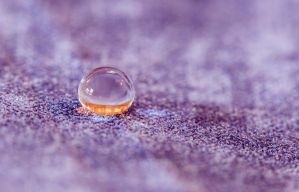 Superhydrophobic by ian-roberts