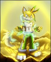 At long last...I've ascended... by Shadz-the-Fox