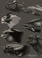 Dragons and Creatures designs by Dahamon