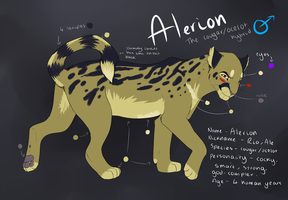 Alerion reference NEW by Rinermai