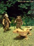MEETING THE EWOKS... by NocturneJewel