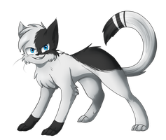 PC: Swiftpaw by aWWEsomeSoph