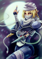 Sheik in the Night by hara-reita