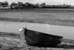beached by in-my-viewfinder