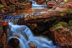 Letting the Water Go by mjohanson