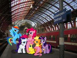 Ponies in Antwerp by Darkkon13