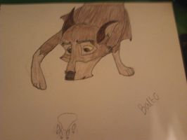 balto by HungerGamesTribute45
