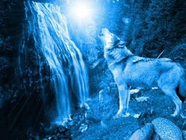 Blue Wolf by Khalla