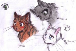 Warrior Cat  ADOPTABLES CLOSED by forgottenlegend