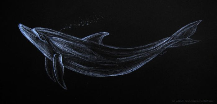 Silver Dolphin by jacij