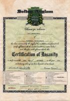 Certificate of Insanity 5 by Joshua-Mozes
