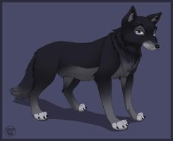 Old black wolf commission by dukacia