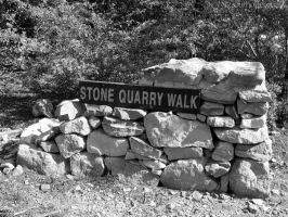Stone Quarry Walk by southoffebruary