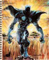 Sketch 30: Black Panther by Cinar