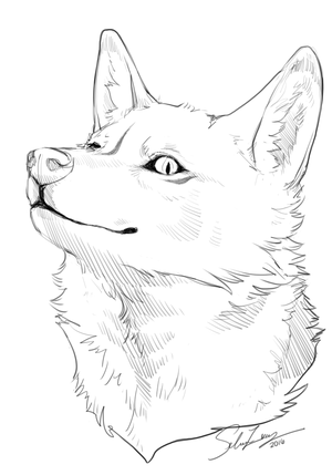 Headshot Sketch by rainfreezer