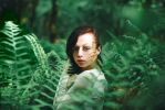 Fern Wood by Dapicture