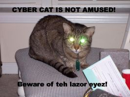 LOLCAT lazer eyes by CaptainCaffiene