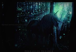 Enchanted Dreamer by BlueBird-Graphics