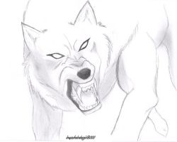 mad wolf by inuyashababygirl3000
