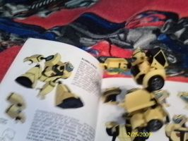 Bumblebee in book by Hellblaze